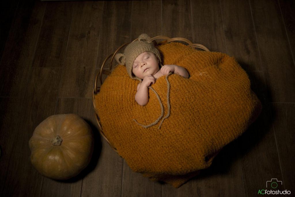 neonato zucca
