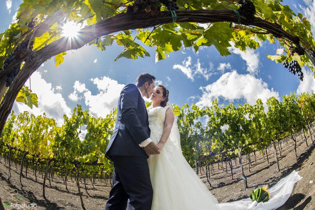 15 sposi sotto uva